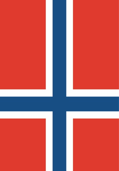 SALE FLAG NORWAY - NATIONAL FLAG