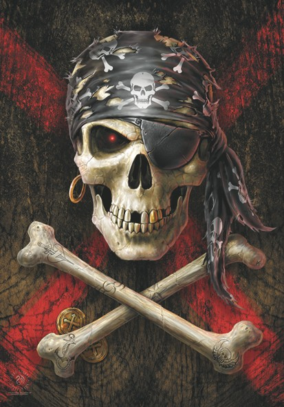 SALE FLAG ANNE STOKES - PIRATE SKULL